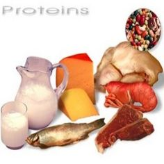 Effective High-Protein Diet For Health