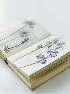 Beautiful idea for a reading nook - scan a page from your favorite book that has meaning to you and print it out, press flowers, use mod podge to apply flowers to page, frame, and enjoy!