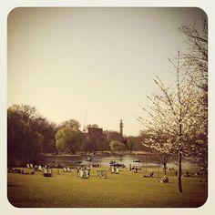 Regent's Park Boating Lake #London #InstagramYourCity entry @SocialMediaWeek @smwldn - @smile_uk- #webstagram
