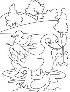 duck-coloring-page