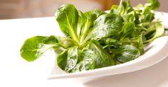 Penne, Spinach, Vegetables, Brest, Food, Bordeaux, Paris, Cucumber, Deep Fry Batter