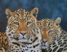 images of leopards | The Leopard Paintings of British Wildlife Artist David Stribbling