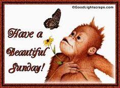 Happy Sunday where ever you are www.tourmedical.com