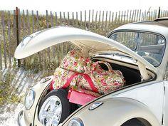 the beach. a bug. & pretty luggage.