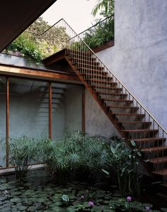 To know more about Studio Mumbai Serene House with Courtyard Pond, visit Sumally, a social network that gathers together all the wanted things in the world! Featuring over 12 other Studio Mumbai items too! Courtyard Design, Courtyard House, Garden Design, House Design, Indoor Courtyard, Patio Design, Patio Interior, Interior Exterior, Wooden Staircases