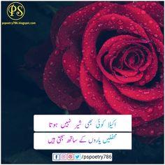 New Friendship poetry 2020 | Dosti shayari in Urdu Dosti Shayari, Urdu Love Words, Urdu News, New Friendship, Romantic Poetry, Urdu Poetry, Ali, Novels, Ant