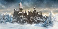 Funko Is Set To Release A Harry Potter Themed Advent