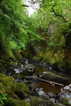 The Fairy Glen in Wales. So beautiful.