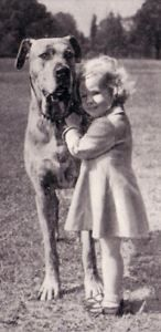 Great dane and child. @Kasie Maxwell
