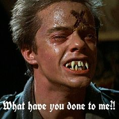 """What have you done to me?!"" (""Fright Night"", 1985) Horror Movie Characters, 90s Movies, Scary Movies, Awesome Movies, Famous Vampires, Real Vampires, Horror Pictures, Horror Pics, Horror Art"