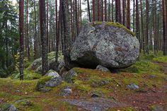 Kolovesi on kansallispuisto Enonkosken ja Heinäveden kuntien ja Savonlinnan kaupungin alueella Etelä-Savon maakunnassa Finland, Trunks, Plants, Soap, Drift Wood, Planters, Plant, Planting