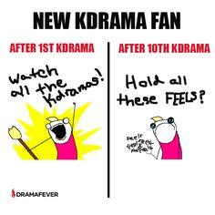Kdrama fans