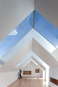 "How I want skylight Windows above entrance hall ideally. Might be difficult but the principle of keeping the two windows as close to the ""spine"" of the ceiling is what I want."