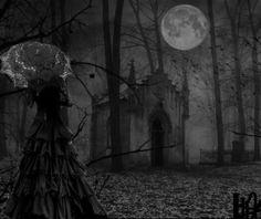 cimetiere la nuit - Startpage Image Recherche