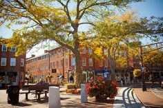 Newburyport, MA in the fall. Doesn't get more New England-y than this.
