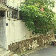 hstranger_ / 담벼락 #wall  / #골목 #비탈 #골목길 #식물 / 서울 / 2012 10 06 /