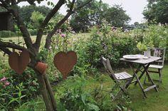 Romantisches Gartenglück hinter´m Deich #Garten  DVA © Christian Lehsten  http://paulineshouse.com/gaertnern-hinterm-deich-kueste/#more-2634