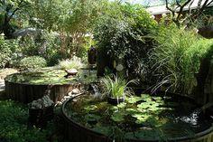 garden pools in Bisbee AZ