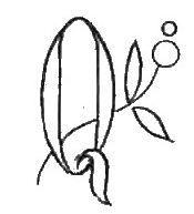 1 - Photo de Alphabet Q - Broderie d'Antan