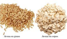 Avena, beneficios y propiedades nutricionales ecoagricultor.com