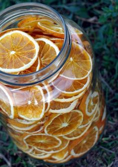 Crispy Orange Chips | 15 Things You Can Make With Your Dehydrator