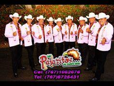 Grandes Corridos con - Los Pajaritos de Tacupa, Mich.