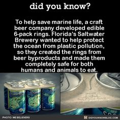 "did-you-kno: To help save marine life, a craft beer company. did-you-kno: ""To help save marine life, a craft beer company developed edible rings. Florida's Saltwater Brewery wanted to help. The More You Know, Did You Know, Save Our Earth, Beer Company, Faith In Humanity Restored, Science, Wtf Fun Facts, Marine Life, Things To Know"