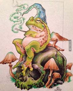 Wizard of frog, marker on paper - 9GAG