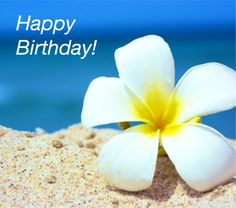 Quotes about Birthday : QUOTATION - Image : As the quote says - Description Happy Birthday Happy Birthday Pictures, Happy Birthday Quotes, Happy Birthday Greetings, Birthday Messages, Birthday Greeting Cards, Birthday Images For Facebook, Hawaiian Birthday, Birthday Blessings, Happy B Day