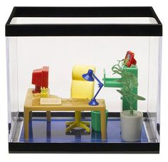 Buy Fish Tank Coffee Table The Cold Water Coffee Table Aquarium - Office fish tanks