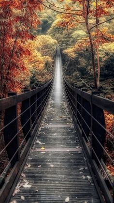 Outdoors Discover New Aesthetic Photography Nature Wallpaper 27 Ideas Autumn Photography Amazing Photography Landscape Photography Photography Tips Photography Awards Photography Equipment Outdoor Photography Portrait Photography Digital Photography Autumn Photography, Amazing Photography, Landscape Photography, Photography Tips, Photography Awards, Photography Equipment, Digital Photography, Portrait Photography, Outdoor Photography