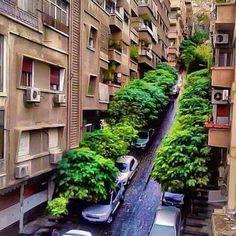 دمشق ♡~