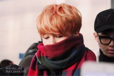 D'awww look at him all smol and  wrapped in a scarf.