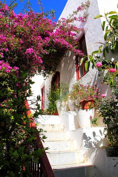 """Mykonos I want to go to Greece so badly...It's #1 on my """"to-do"""" list."""