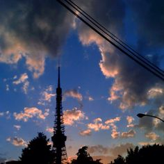 黄昏の東京タワー