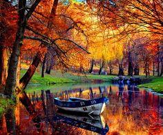 Så här ser hösten ut i mina drömmar, aldrig regn och rusk. Vackert!!