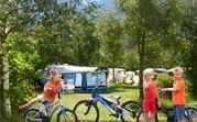 KARINTHIE, Berg im Drautal, Camping Berggruss, 23,50euro, toerplaatsen: 50 (100m2), Zeer gezellige familiaire camping in een prachtig natuur- en wandelgebied grenzend aan een schitterende 9-holes golfbaan.
