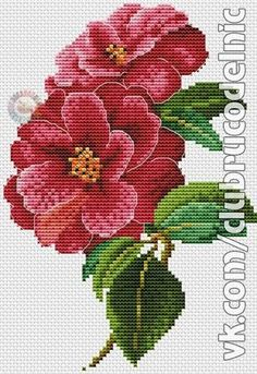 Thrilling Designing Your Own Cross Stitch Embroidery Patterns Ideas. Exhilarating Designing Your Own Cross Stitch Embroidery Patterns Ideas. Cross Stitch Borders, Crochet Borders, Cross Stitch Baby, Cross Stitch Flowers, Cross Stitch Charts, Cross Stitch Designs, Cross Stitching, Cross Stitch Embroidery, Embroidery Patterns