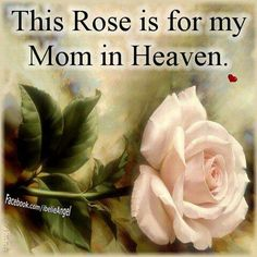 rose, memori, family quotes, mothers day, picture quotes, famili, heaven, mother quotes, mom