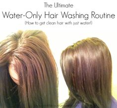 The Ultimate Water-Only Hair Washing Routine - How to get clean hair with just water via Just Primal Things Blog. Tags: No Poo, Shampoo-Free, Water-Only Hair Washing, natural hair care