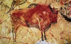 Cave of Altamira known as the Sistine Chapel of the cave painting, near Santander, Spain. Fresco, Chauvet Cave, Paleolithic Period, Cave Drawings, Mural Painting, Cave Painting, Tempera, Stone Art, Ancient Art