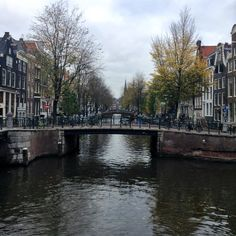 Scenes From Amsterdam