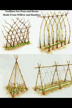DIY trellis designs. Hmmm...which one should I build?