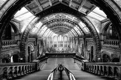 A.Day.At.The.Museum.BW by thebigbadwolf