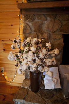 We used cotton from my daddy's farm to decorate with