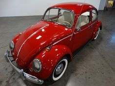Used 1965 Volkswagen Beetle For Sale