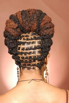 Loc up do from the back
