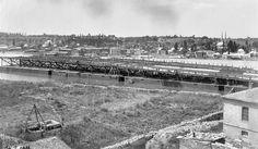 Galata Köprüsü inşa ediliyor. 1911-12