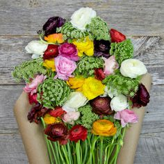 Cake n' Cream Flower Bouquet - The Bouqs Company