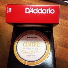 Auténticas cuerdas de Cuatro Venezolano ❤️🎶✌🏼️#cuatro #daddario #beracamusica #venezuela #musica